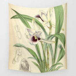 Cochleanthes discolor Orchid 1855 Wall Tapestry