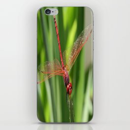 Red Skimmer or Firecracker Dragonfly Closeup iPhone Skin
