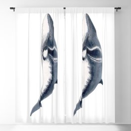Baby Minke whale Blackout Curtain