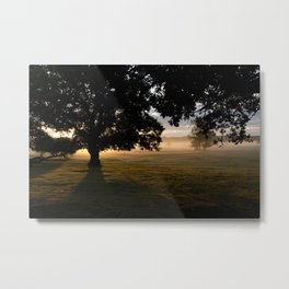 Misty dawn in the New Forest Metal Print