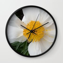 White Beauty by Teresa Thompson Wall Clock