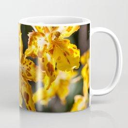 Orchids 17-3 Coffee Mug