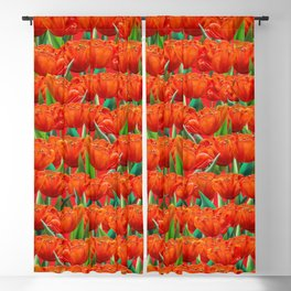 Red Tulips Flowers Field Floral Pattern Hand Drawn Blackout Curtain
