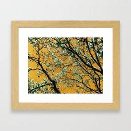 Tapestry of the Trees Framed Art Print