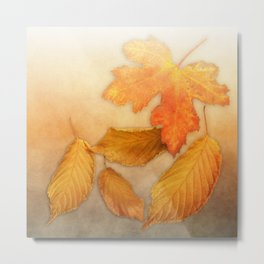 Autumn leaves in yellow and orange Metal Print