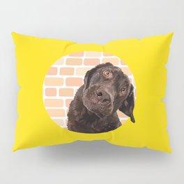 Dog peek a boo Pillow Sham