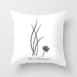 Chives Botanical Illustration Throw Pillow