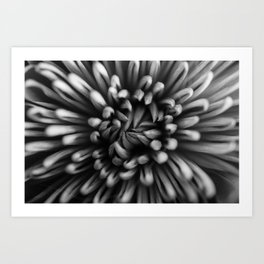 Up close and personal black and white Art Print