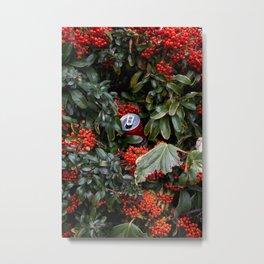 coke and berries Metal Print
