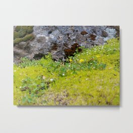 Tiny Mossy Landscape Metal Print