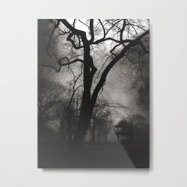 Dark Park Metal Print