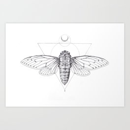 Midnight Cicada Art Print