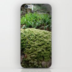 plant moss texture iPhone & iPod Skin