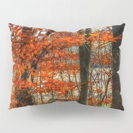 Kyle Lake Fall Leaves Pillow Sham