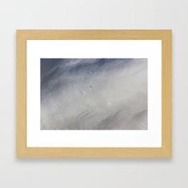 Swan Feathers Framed Art Print