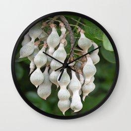 Dewy Dandelion Wall Clock