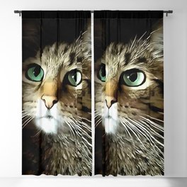 Tabby Cat With Green Eyes Isolated On Black Blackout Curtain
