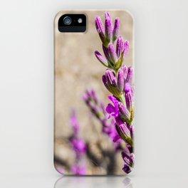 lila am Weg iPhone Case
