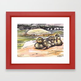 baby ducks Framed Art Print