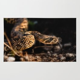Rattlesnake-II Rug