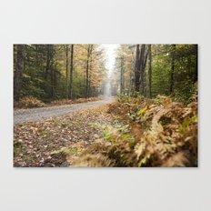 Along The Road - Fall Canvas Print