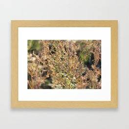 Autumn whisper Framed Art Print