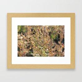 Autumn whisper Framed Art Print