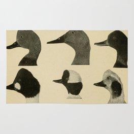 Vintage Duck Heads Rug