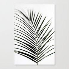 Palm Leaves 7 Canvas Print