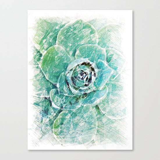 Greenery on Succulent Canvas Print