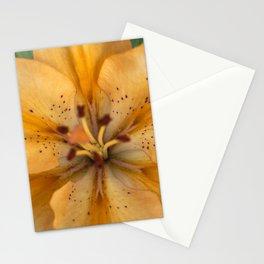 Close up photo of orange lily Stationery Cards
