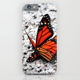 Butterflies Mating iPhone Case