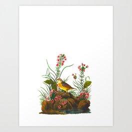 Yellow-winged Sparrow Art Print