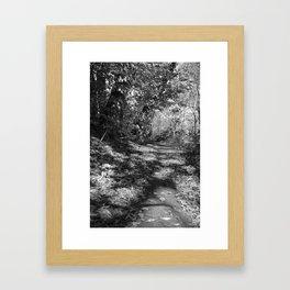 nature trail-black and white Framed Art Print