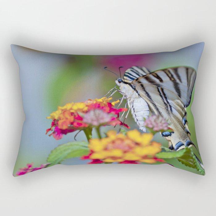 Southern swallowtail or zebra butterfly Rectangular Pillow