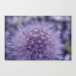 the beauty of a summerday -4- Canvas Print