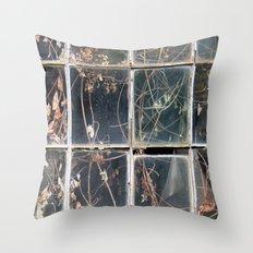 Windows - Fitchburg Throw Pillow
