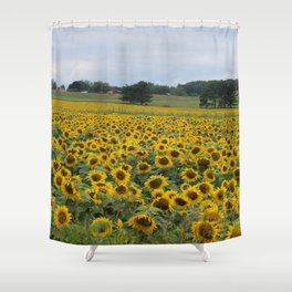Field of a Million Sunfowers I Shower Curtain