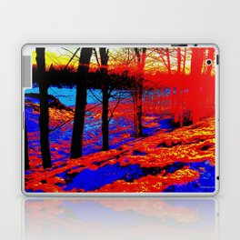 Snow Fire Laptop & iPad Skin