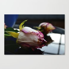 Dying Rose Canvas Print