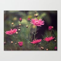 confetti Canvas Prints featuring confetti by Monica Ortel ❖