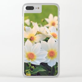 Dahlia White Flowers Outdoors Flowerbed Solar Rays Clear iPhone Case