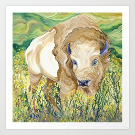 White Bison in Field Art Print