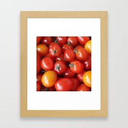 SIMPLY TOMATOES! Framed Art Print