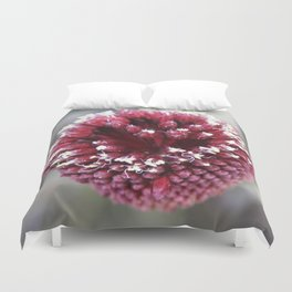 Macro of Round-Headed Leek Flower Allium Sphaerocephalon Duvet Cover