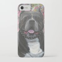 pitbull iPhone & iPod Cases featuring pitbull by stef-w