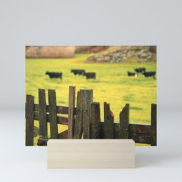 Pasture, fence and cows Mini Art Print