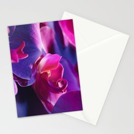 Flowers are Perfect Muses Stationery Cards