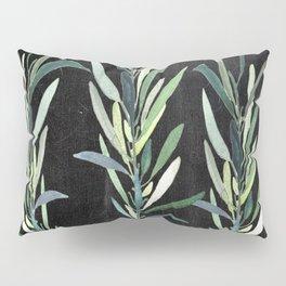 Eucalyptus Branches On Chalkboard Pillow Sham