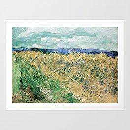 Wheatfield with Cornflowers by Vincent van Gogh Art Print